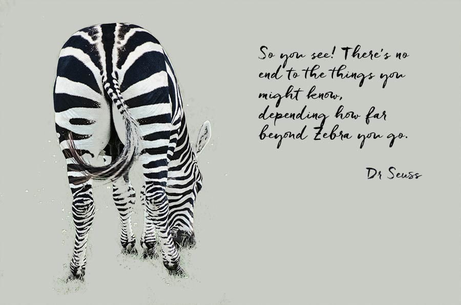 Rear view of a zebra and a quote from Dr Seuss 'So you see! There's no end to the things you might know, depending how far beyond Zebra you go.'