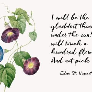 Morning Glory flowers in blue and red with a quotation from Edna St. Vincent Millay that 'I will be the gladdest thing under the sun! I will touch a hundred flowers And not pick one.'