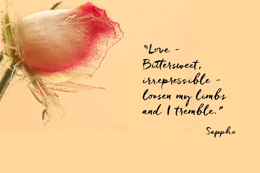 """A pink rosebud with a quote from Sappho """"Love - Bittersweet, irrepressible - loosen my limbs and I tremble."""""""
