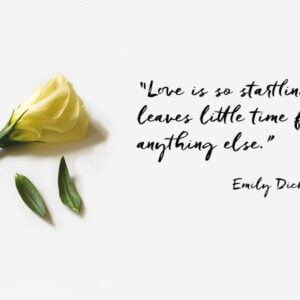 """Yellow lisianthus flower with additional loose petals lying on a pale coloured surface, and quote by Emily Dickinson """"Love is so startling, it leaves little time for anything else."""""""