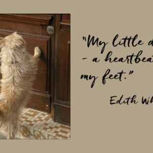 """A small dog with paws raised against a door and a quotation from Edith Wharton """"My little dog - a heartbeat at my feet."""""""
