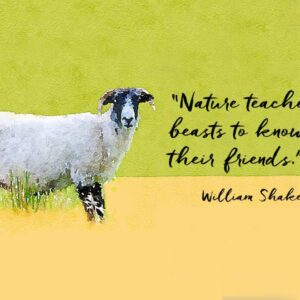 """Illustration of a black faced sheep in profile with a quotation from William Shakespeare """"Nature teaches beasts to know their friends."""""""